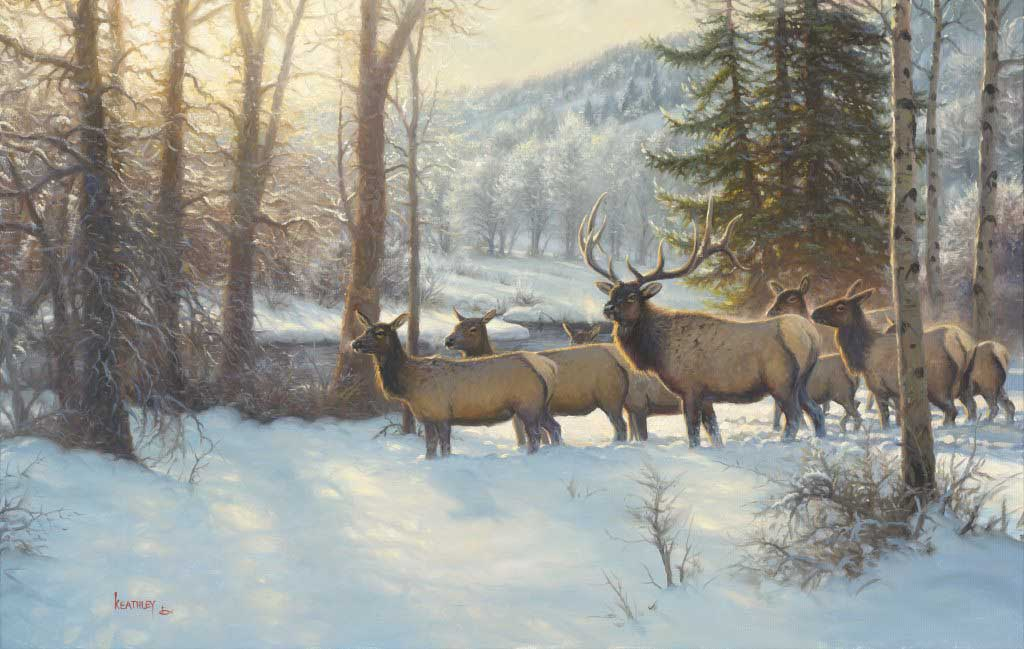 deer in the snow by mark keathley